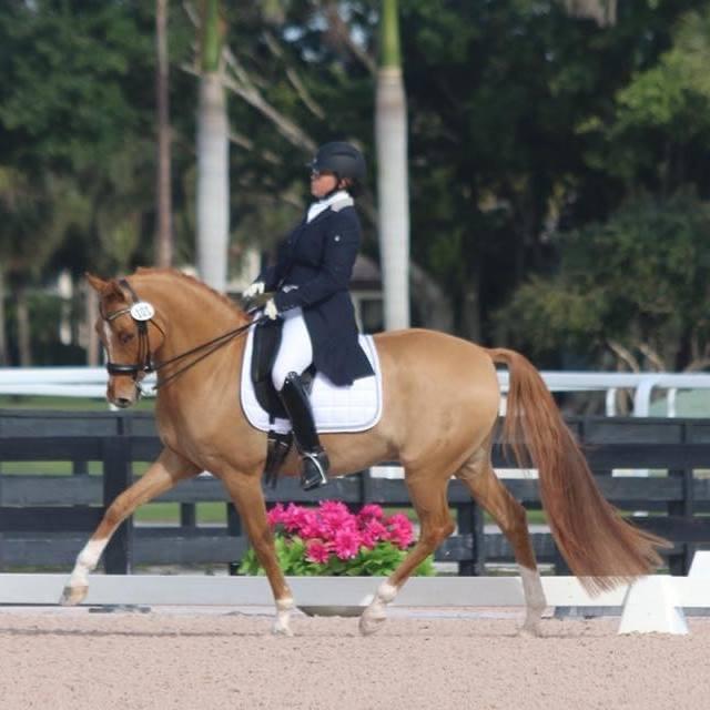 Sara Schmidt dressage champion recommends StressLess For Horses
